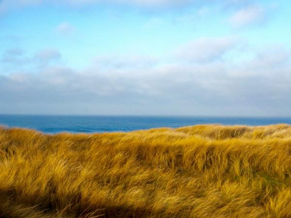 denmark-vejers-strand-winter-dunes-1