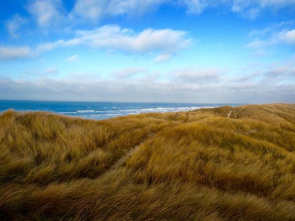 denmark-vejers-strand-winter-dunes-2