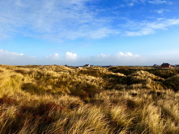 denmark-vejers-strand-winter-view-over-dunes